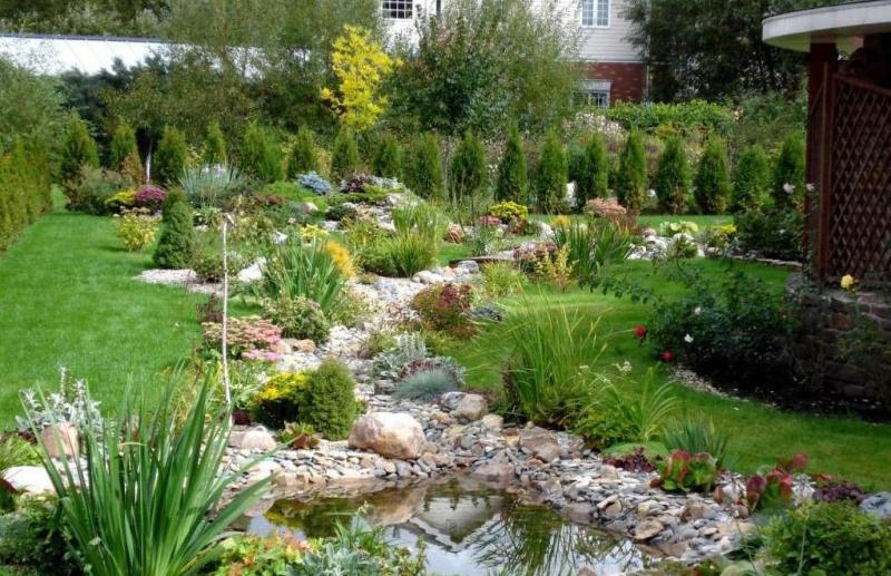 Очень красивый ландшафтный дизайн с прудом и большим количеством видов декоративных растений.