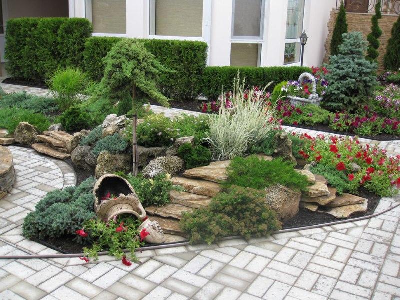 Саженцы оптом в питомнике декоративных растений в Подмосковье