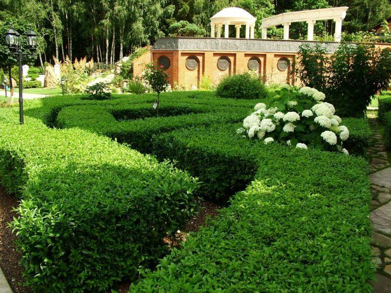 Дизайн декоративного сада фото