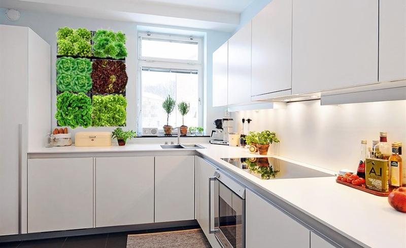 Дизайн стен кухни фото 2016 современные идеи