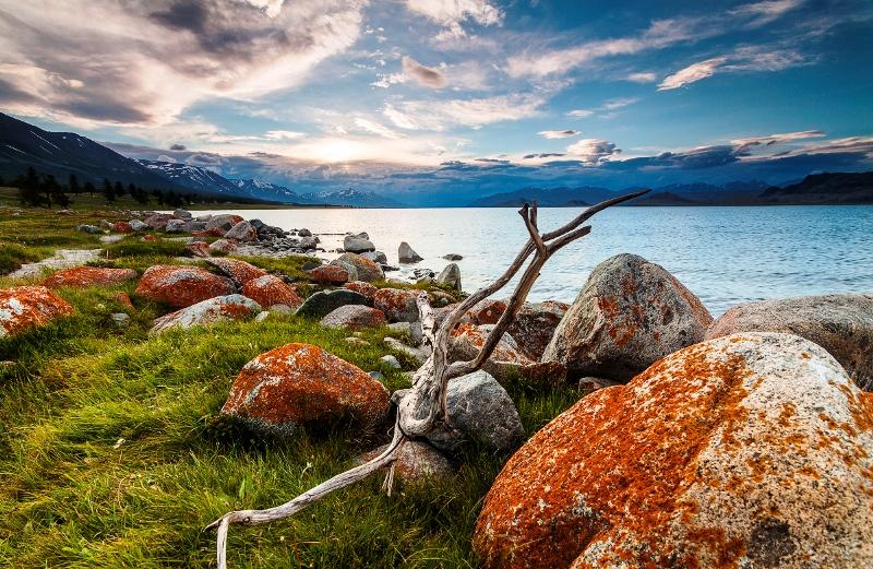 фотографии природы лучшие