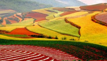 Красная почва в Китае