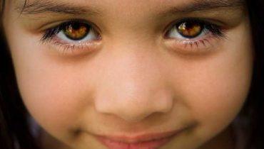 факты о глазах
