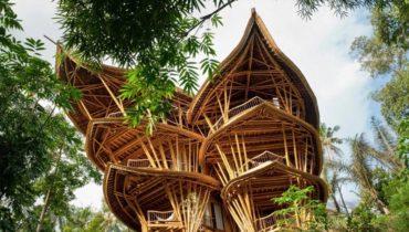Бамбуковая архитектура